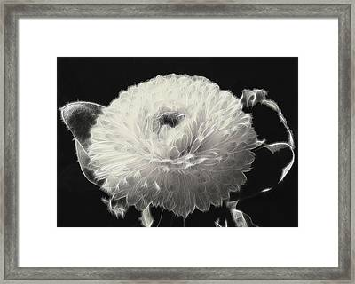 Mumsy Framed Print by Wendy J St Christopher