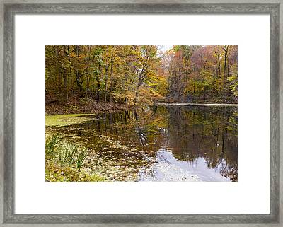 Munroe Falls  Framed Print by Tim Fitzwater