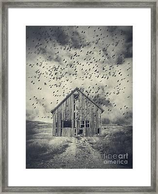 Murder Of Crows Framed Print by Edward Fielding