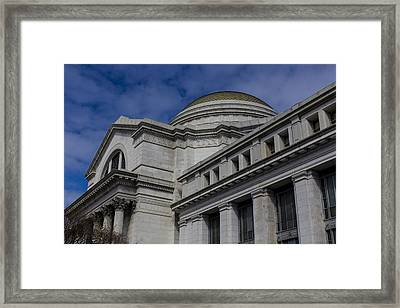 Museum Of Natural History Framed Print by Andrew Pacheco