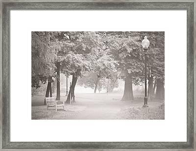 Museum Park Fog Framed Print by Trish Tritz