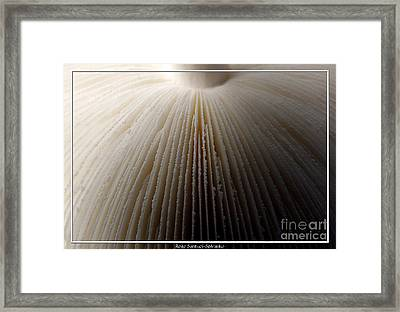 Mushroom With Watercolor Effect 4 Framed Print by Rose Santuci-Sofranko