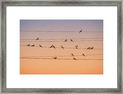 Music Of Light Framed Print by John Fan