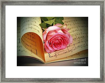 Musical Rose Framed Print by Inspired Nature Photography Fine Art Photography