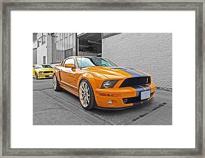 Mustang Alley Framed Print by Gill Billington