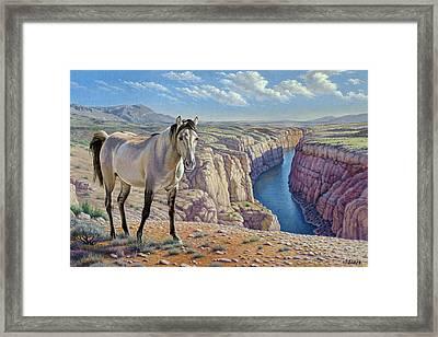 Mustang At Bighorn Canyon Framed Print by Paul Krapf