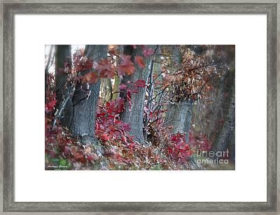 My Autumn Nostalgia. Framed Print by  Andrzej Goszcz