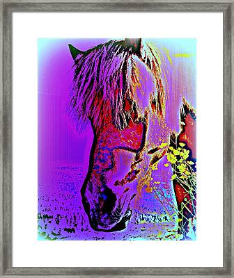 My Horse In Purple With Yellow Flowers  Framed Print by Hilde Widerberg
