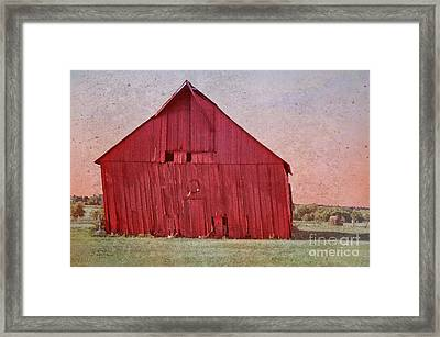 My Days Are Done Framed Print by Betty LaRue