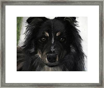 My Favorite Bud Framed Print by Sharon Duguay
