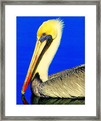 My Friend Pelli Framed Print by Karen Wiles