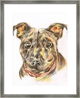 A  Friend Framed Print by Teresa White