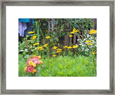 My Garden Framed Print by Gabriel Mackievicz Telles