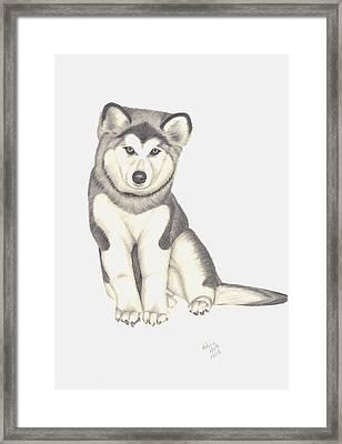 My Husky Puppy-misty Framed Print by Patricia Hiltz