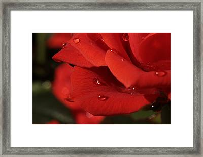 My Love ... You Sparkle  Framed Print by Connie Handscomb