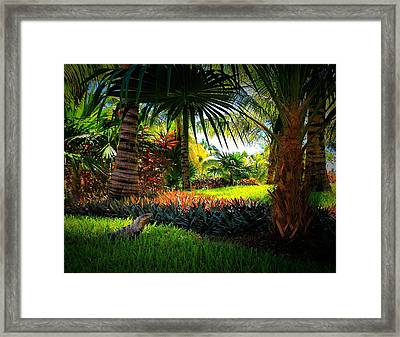 My Pal Iggy Framed Print by Robert McCubbin