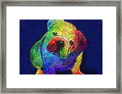 My Psychedelic Bulldog Framed Print by Jane Schnetlage