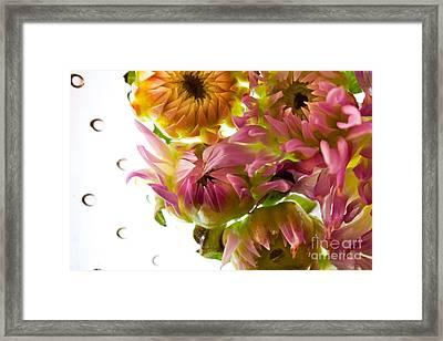 My Secret Garden Framed Print by Bobby Villapando