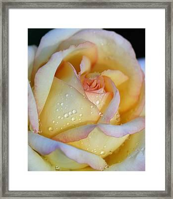 My Way Framed Print by  The Art Of Marilyn Ridoutt-Greene