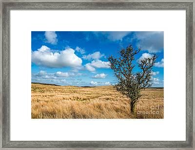 Mynydd Hiraethog Framed Print by Adrian Evans