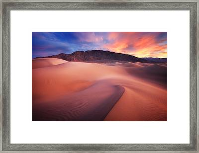 Mysterious Mesquite Framed Print by Darren  White