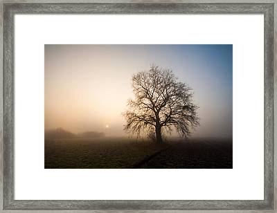 Mystic Morning Framed Print by Davorin Mance