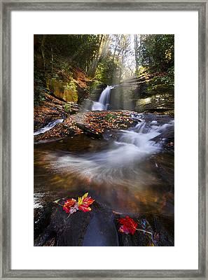 Mystical Pool Framed Print by Debra and Dave Vanderlaan