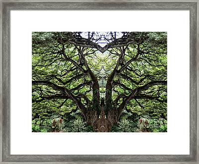 Mystify Framed Print by Cheryl Young
