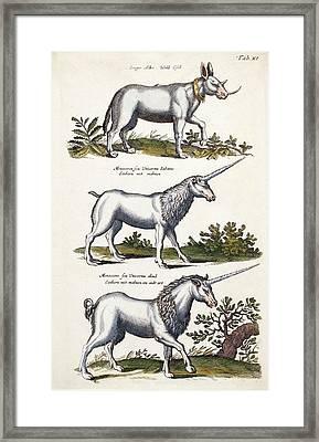 Mythical Horned Beasts Framed Print by Paul D Stewart