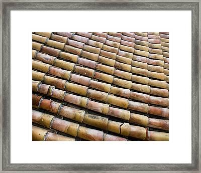 Nafplio Roof Tiles Framed Print by David Waldo
