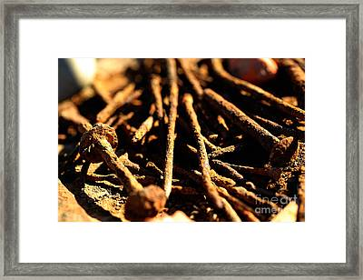 Nails Framed Print by Cheryl Young