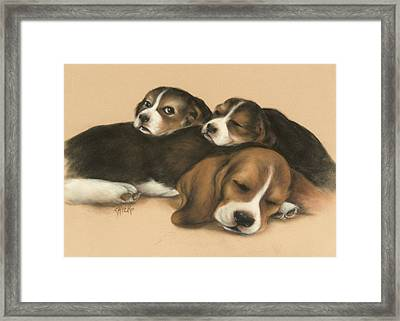 Nap Time Framed Print by Chieko Amadon