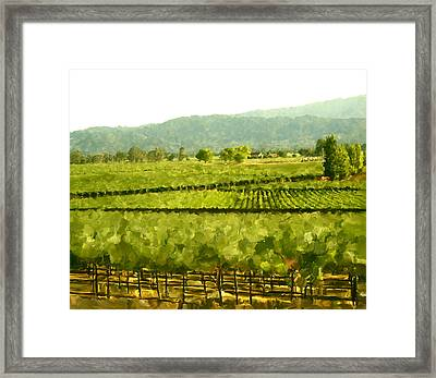 Napa Framed Print by Paul Tagliamonte