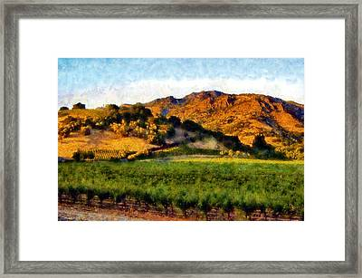 Napa Valley Framed Print by Kaylee Mason