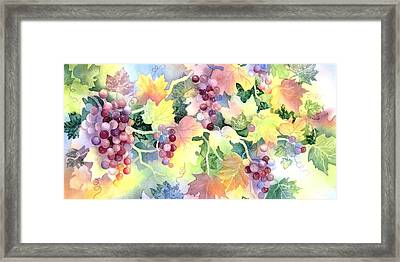Napa Valley Morning 3 Framed Print by Deborah Ronglien
