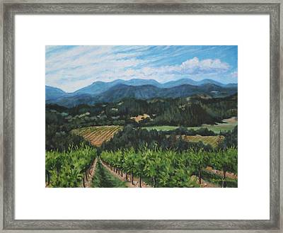 Napa Valley Vineyard Framed Print by Penny Birch-Williams