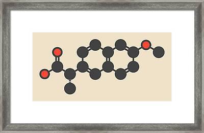 Naproxen Inflammation Drug Molecule Framed Print by Molekuul