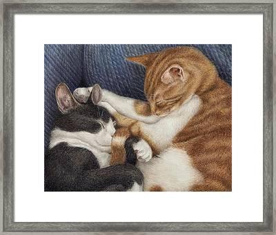 Naptime Framed Print by Pat Erickson