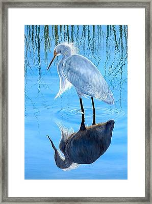 Narcissus Framed Print by AnnaJo Vahle
