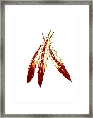 Native American Feathers  Framed Print by Michael Vigliotti