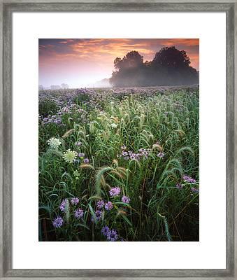 Native Prairie Sunrise Framed Print by Ray Mathis