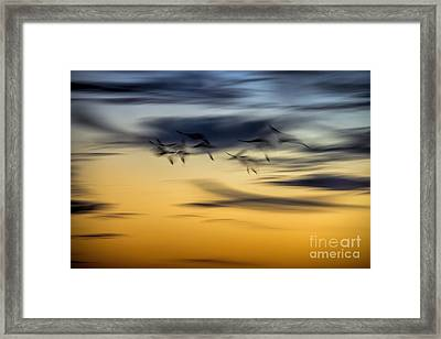 Natural Abstract Art Framed Print by Peggy Hughes