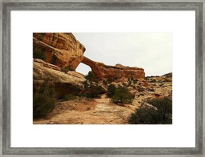 Natural Bridge Southern Utah Framed Print by Jeff Swan