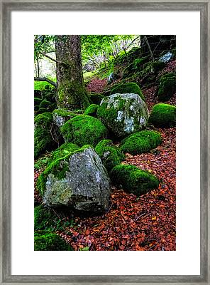 Natural Emeralds. Wicklow. Ireland Framed Print by Jenny Rainbow