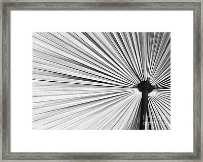 Natural Expolsion Framed Print by Sabrina L Ryan