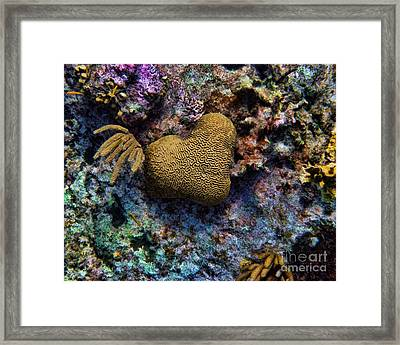 Natural Heart Framed Print by Peggy Hughes
