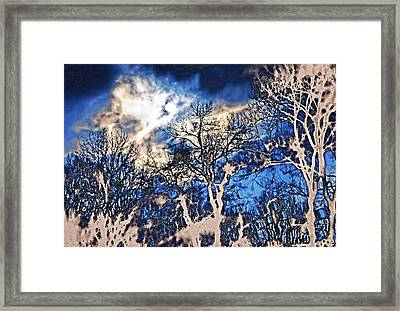 Natural Highlights Framed Print by Kellice Swaggerty