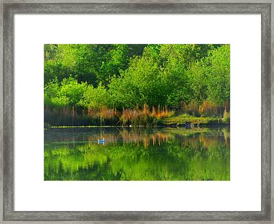 Naturally Reflected Framed Print by Joyce Dickens