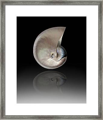 Nature By The Sea  Framed Print by Mark Ashkenazi