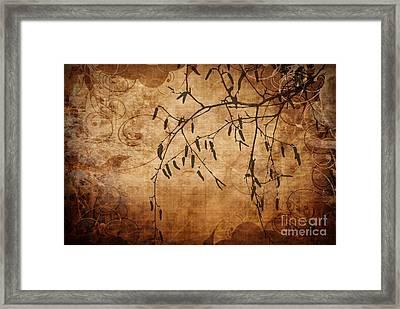 Nature Canvas  Framed Print by Andrea Kollo